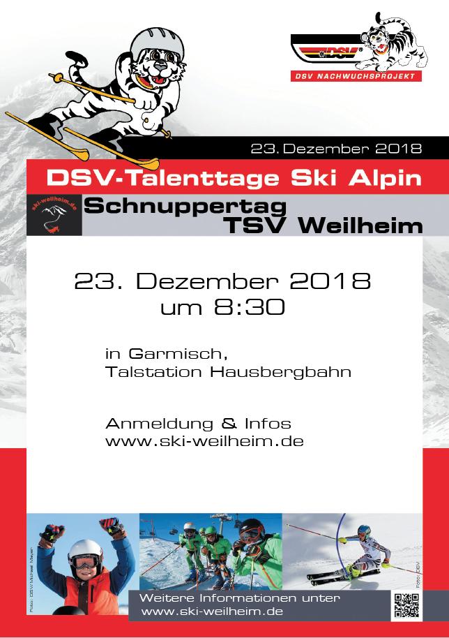 2018-12 dsv_talenttag_alpin_tsv