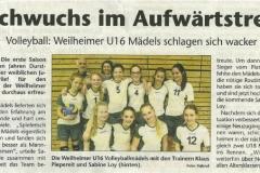 2014-08-16-Kreisbote(Volleyball)