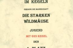 2012-08-18-Stadtmeisterschaft-Kegeln-DsWm